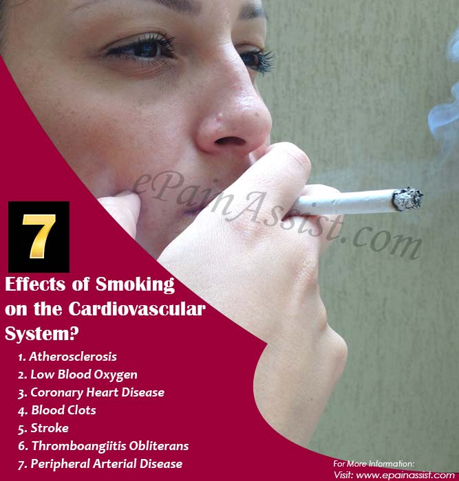7 Effects of Smoking on the Cardiovascular System
