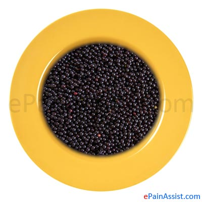 Elderberry Helps In Relieving Nerve Pain
