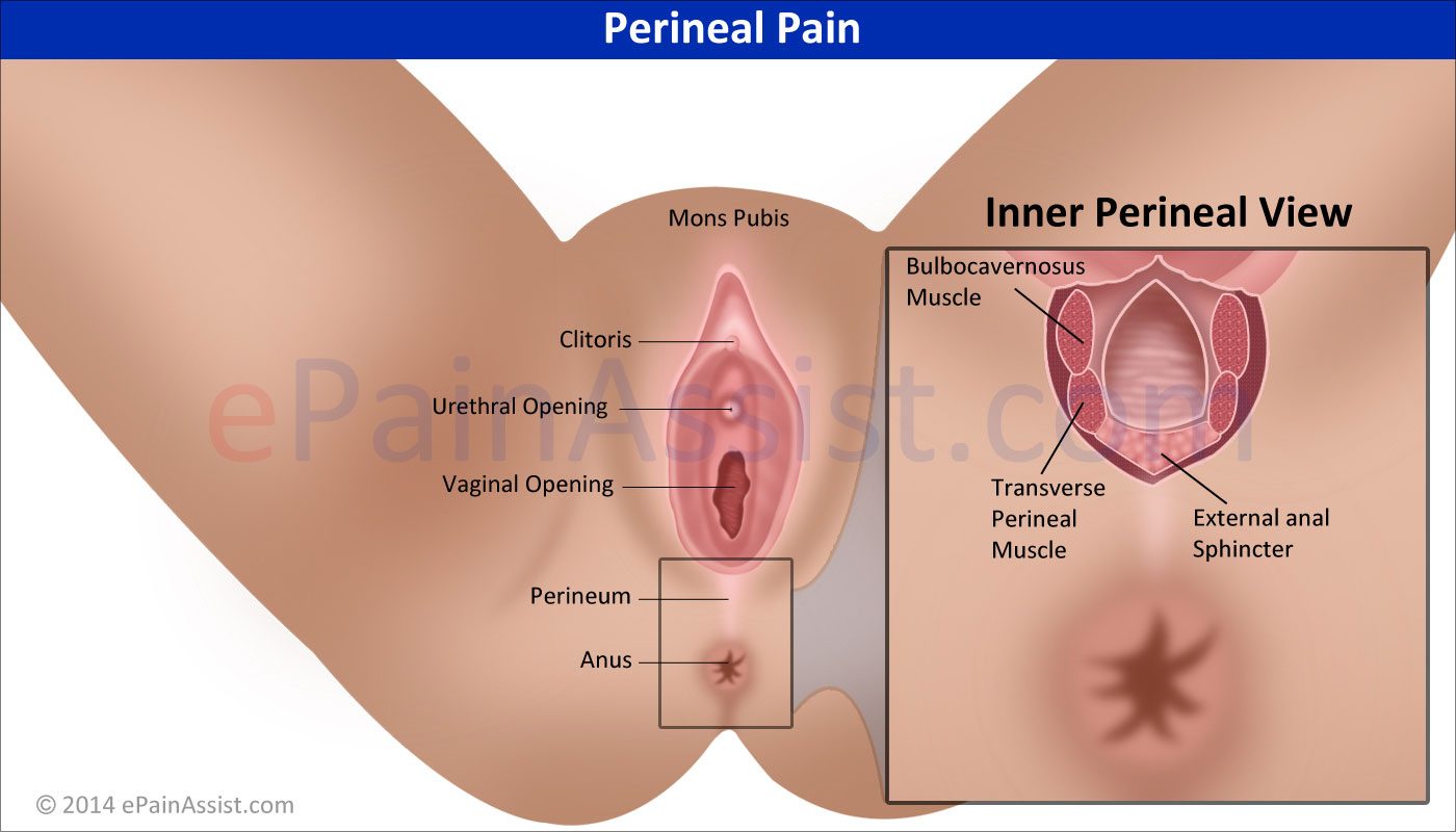 perineum inflammation female