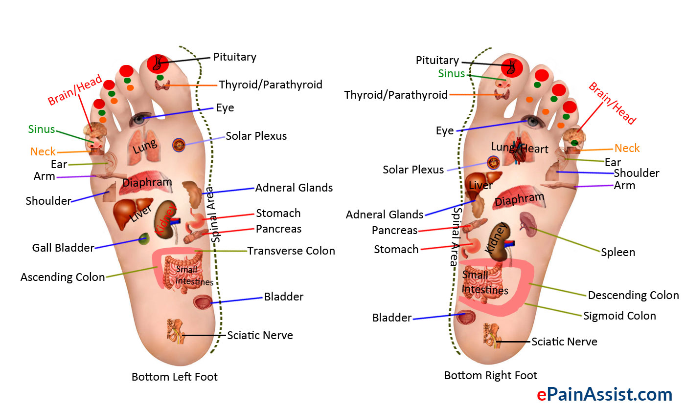 Reflexology or Zone Therapy
