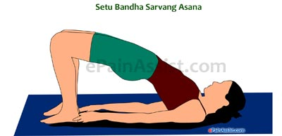 Setubandha Sarvang Asana Or Bridge Pose Performed for Arthritis!