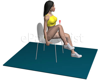 Sitting Hip Flexion Exercise for Iliopsoas Bursitis