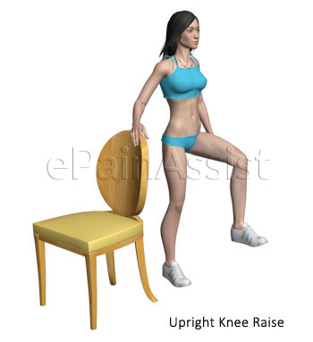 Upright Knee Exercise for Hip Dislocation