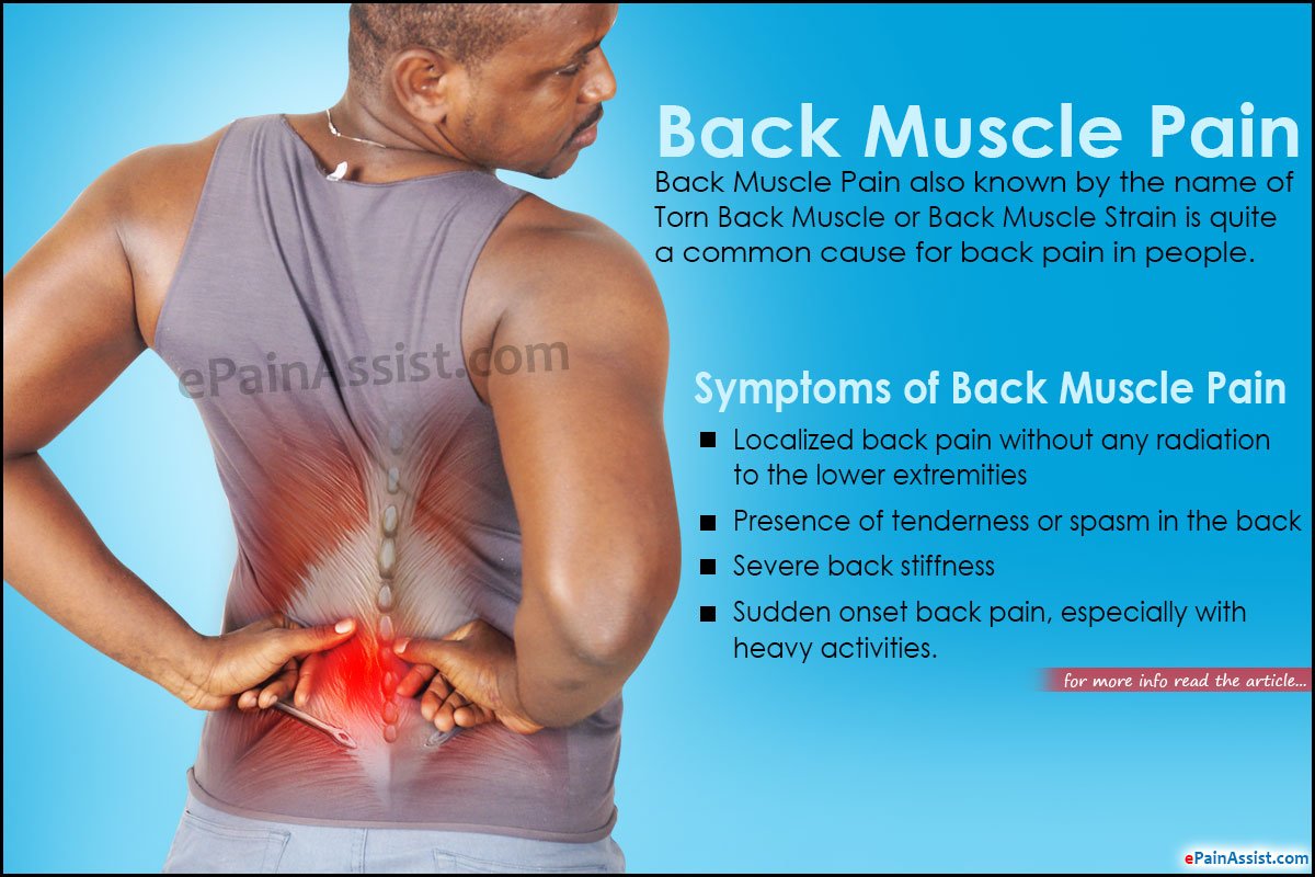 Back Muscle Pain