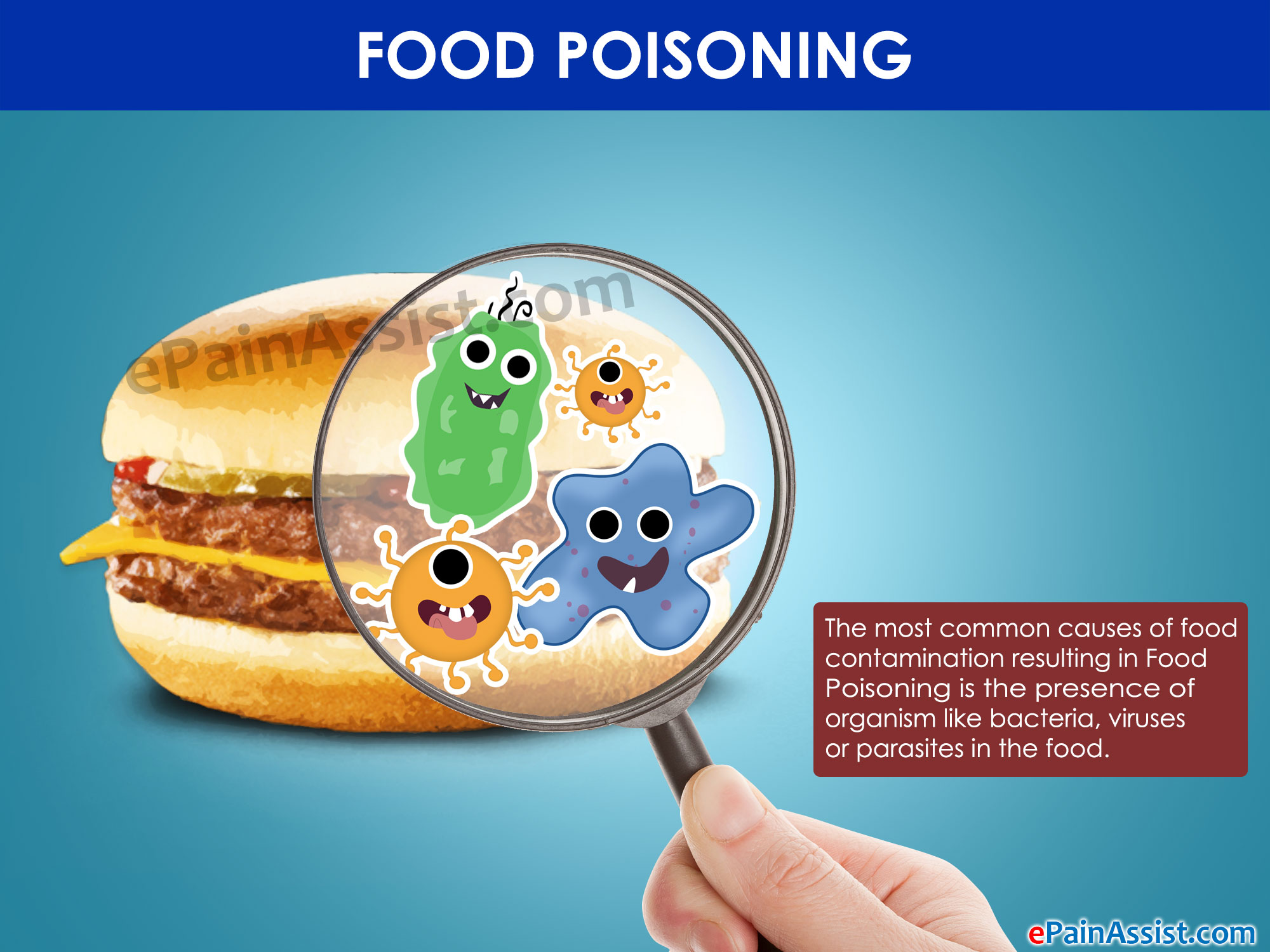 How To Get Rid Of Salmonella Food Poisoning