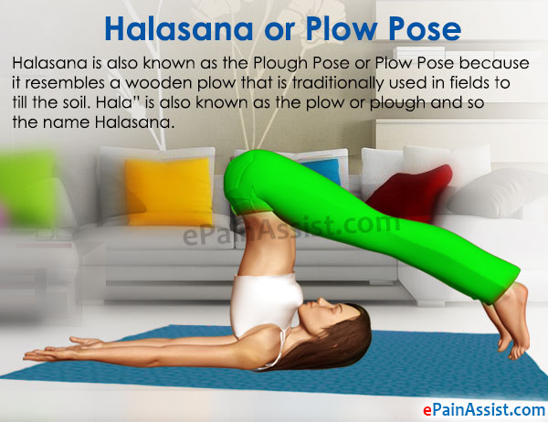 Halasana or Plow Pose