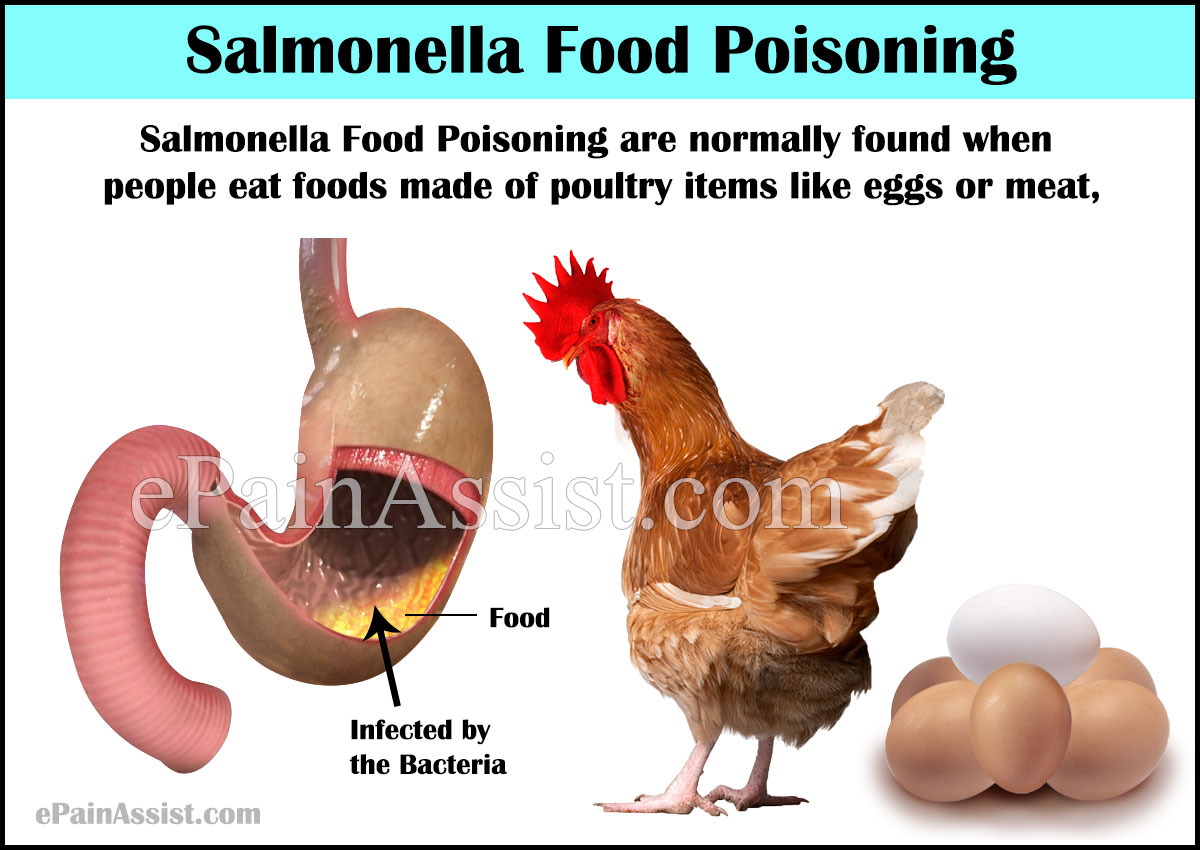 Salmonella Food Poisoningcausessymptomstreatmentrecovery Period