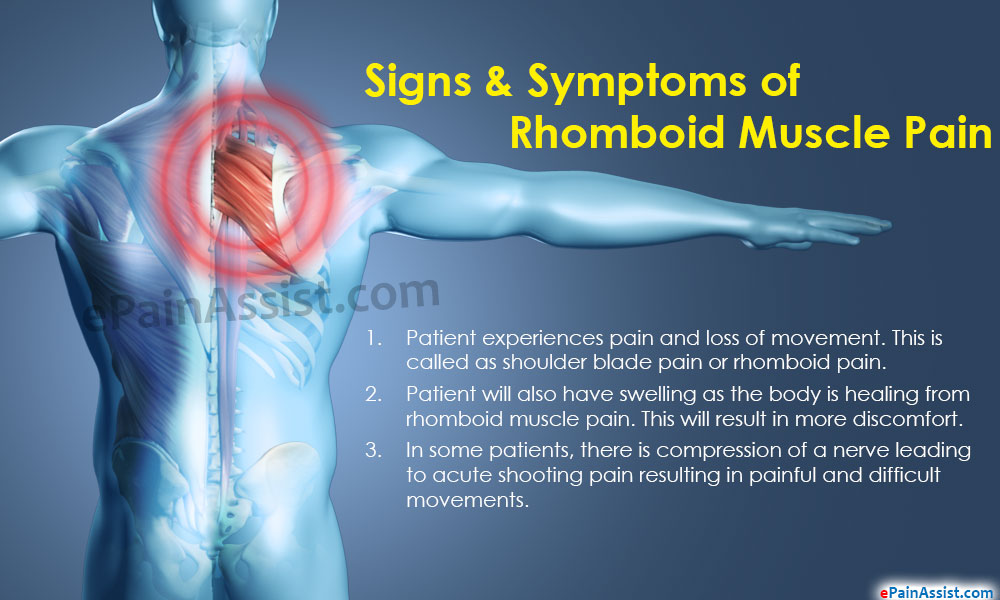 Signs & Symptoms of Rhomboid Muscle Pain