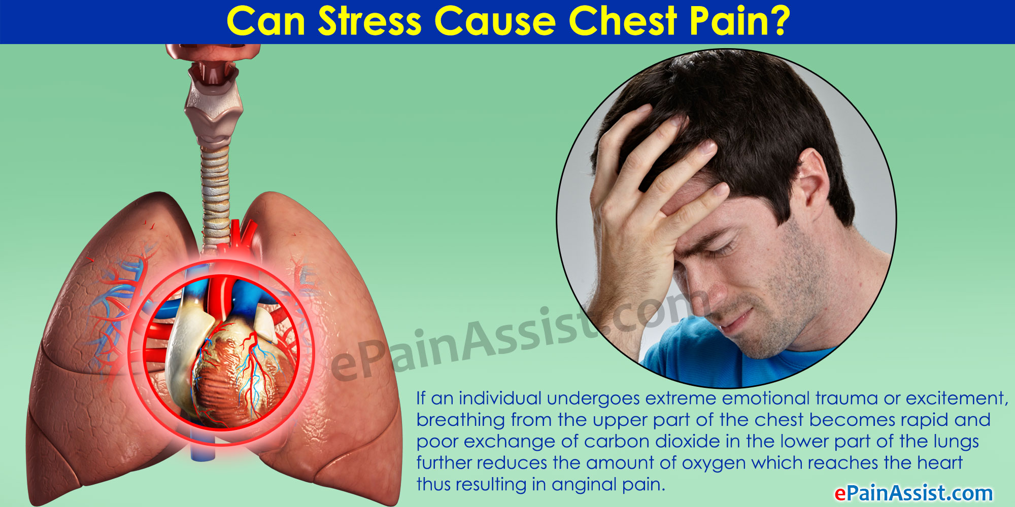 Causes Of Chest Pain Due To Stress