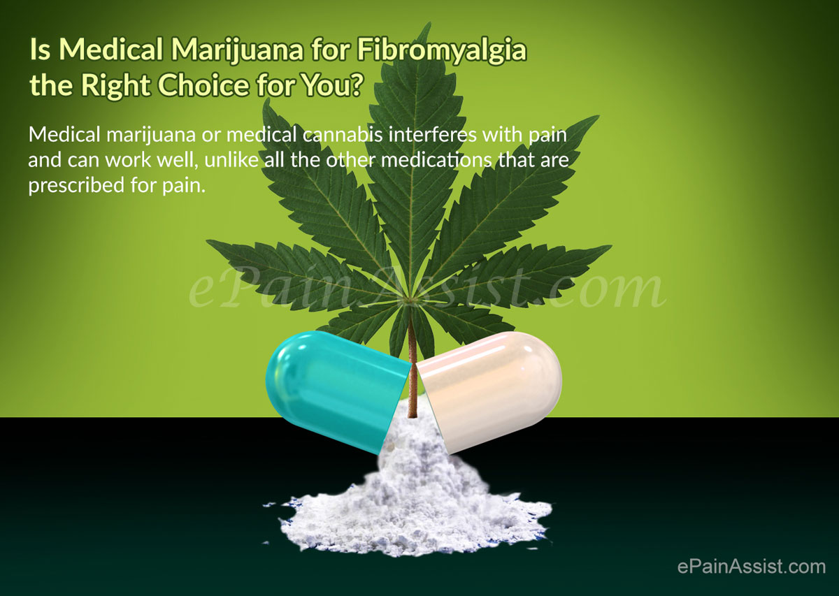medical marijuana for fibromyalgia the right choice for you?, Skeleton