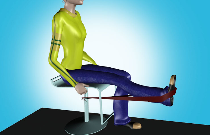 3d Video Of Physical Therapy Exercises For Knee Pain