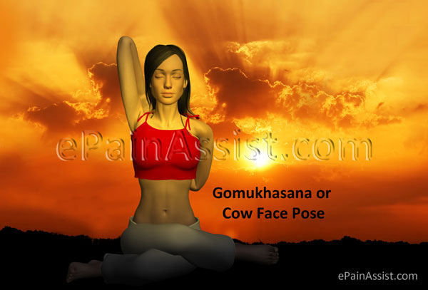 Yoga Gomukhasana Cow Face Pose for Stretching the Rib Muscles!