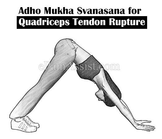 Yoga Adho Mukha Svanasana for Quadriceps Tendon Rupture
