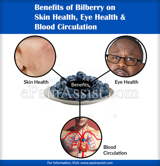 Benefits of Bilberry on Skin & Eye Health, Blood Circulation