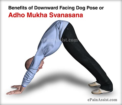 Benefits of Downward Facing Dog Pose or Adho Mukha Svanasana for Men