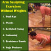 Arm-Sculpting Exercises With & Without Weights