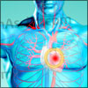 Atherosclerosis or Arteriosclerosis: Causes, Symptoms, Treatment, Prevention, Complications