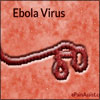 What is Ebola Virus? Know The Facts, How Can One Get Infected, Diagnosis, Treatment, Prevention, Its Chances of Spreading in USA
