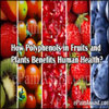 How Polyphenols in Fruits and Plants Benefits Human Health?