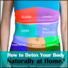 How to Detox Your Body Naturally at Home?