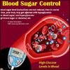 Importance of Blood Sugar Control & Measures to Control it