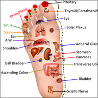 Reflexology or Zone Therapy! An Alternative Pain Relief Technique; Origin, Differences, Benefits
