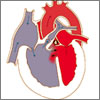 What Is Tetralogy of Fallot and How Is it Treated?