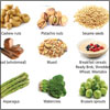 Top 9 Vegetarian Foods That are a Rich Source of Protein