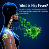 What is Hay Fever, Know its Causes, Symptoms, Treatment, Prevention, Pathophysiology, Risk Factors