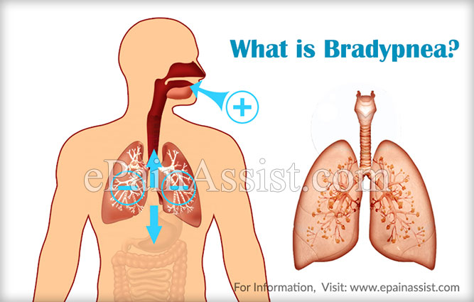What is Bradypnea?
