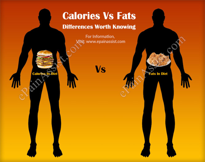 Calories Vs Fats: Differences Worth Knowing!