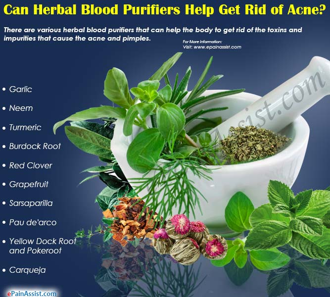 Can Herbal Blood Purifiers Help Get Rid of Acne?