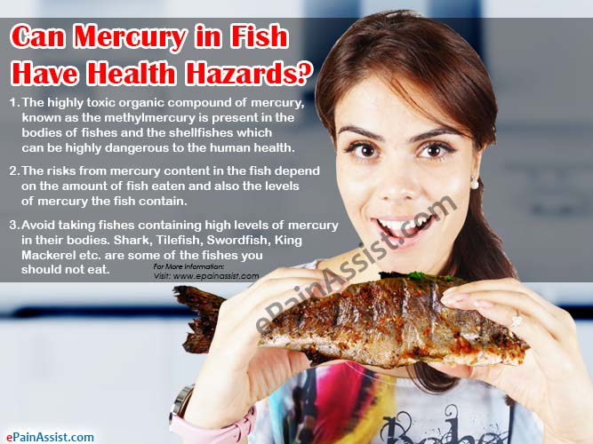 Can Mercury in Fish Have Health Hazards?