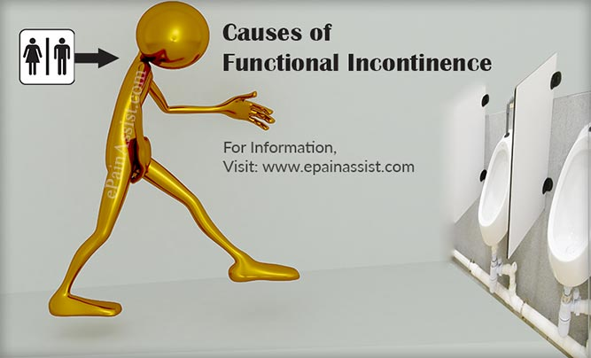 What is Functional Incontinence?