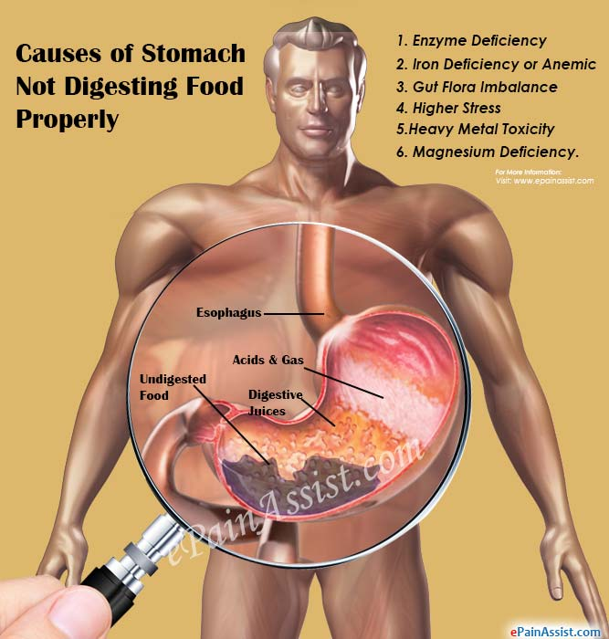 milk and meat digestion stomach not digesting food properly causes symptoms home 818