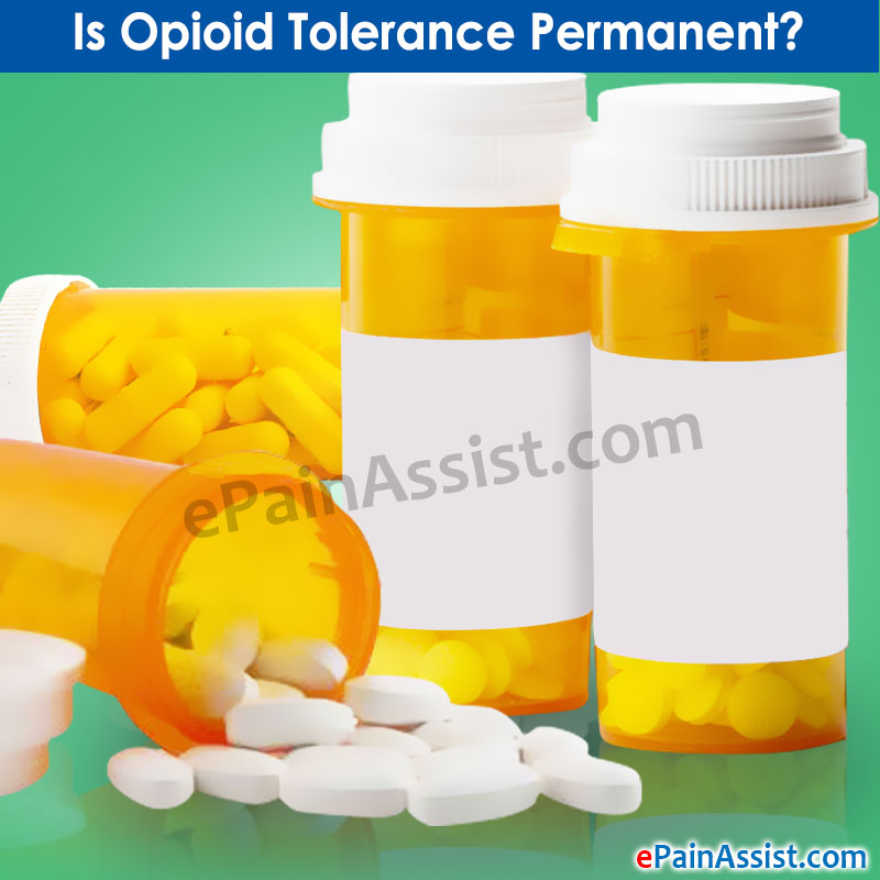 Is Opioid Tolerance Permanent
