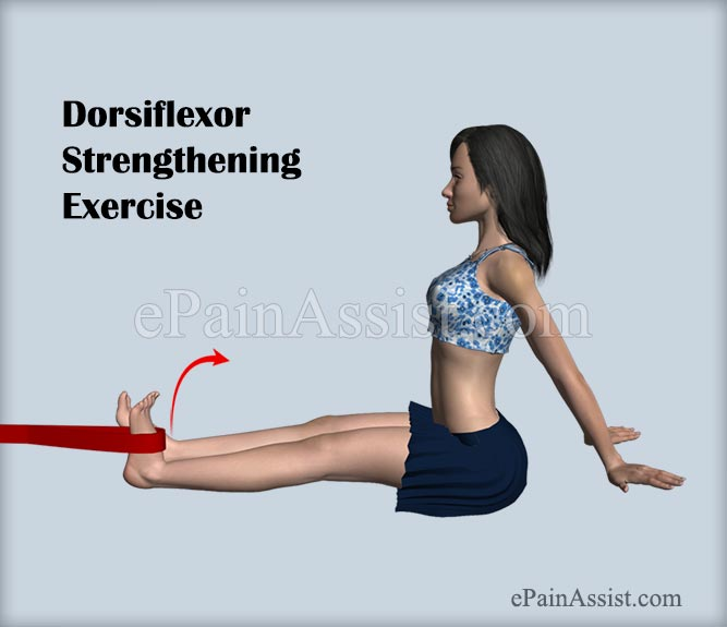 Dorsiflexor Strengthening Exercise For Ankle Joint Ligament Injury!