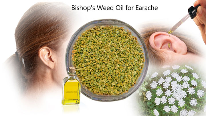 bishops-weed-oil-for-earache