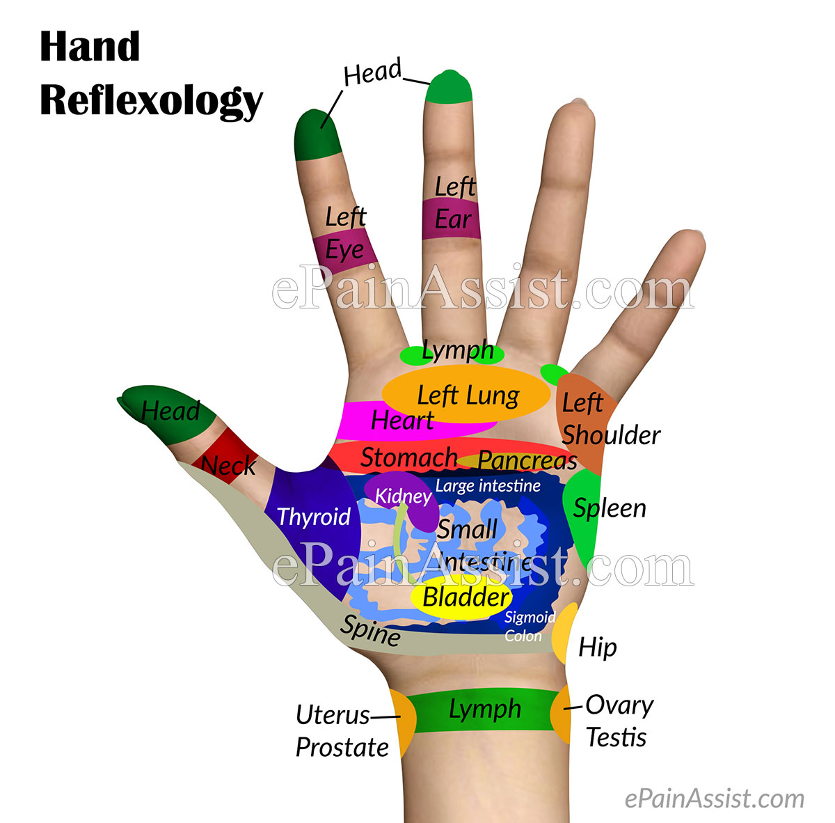 What is Hand Reflexology and What are its Benefits?