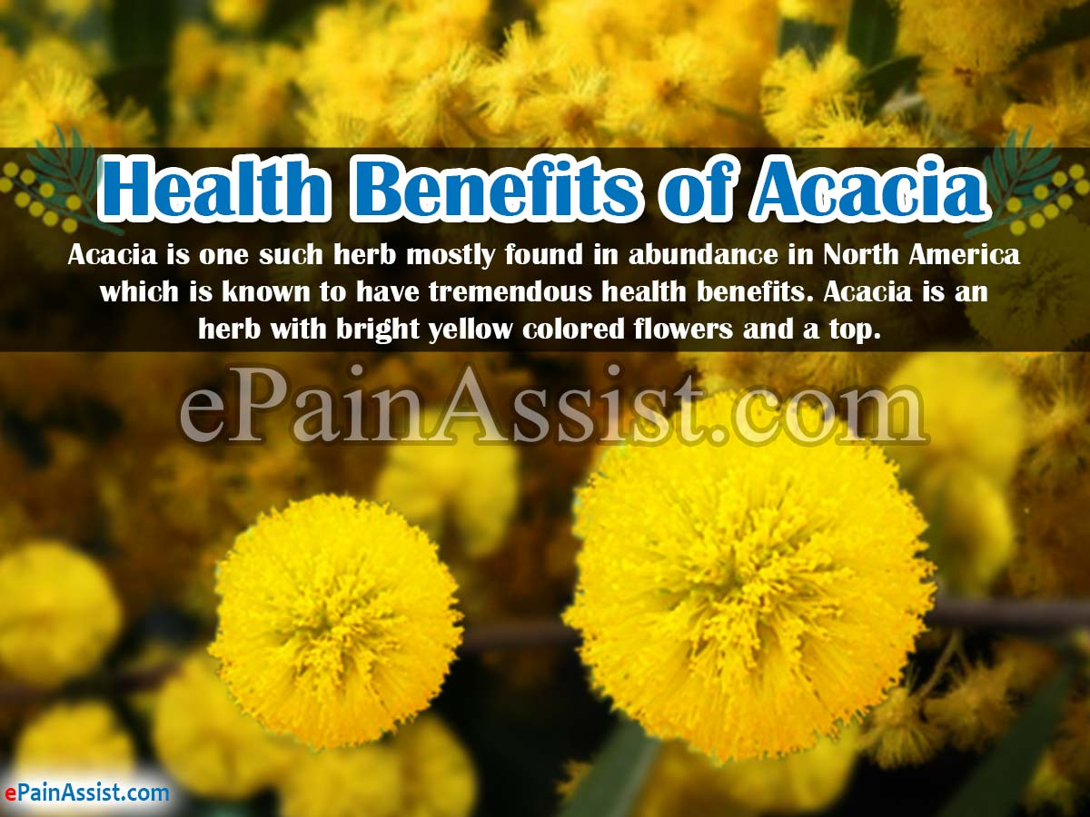 Health Benefits of Acacia & Its Side Effects