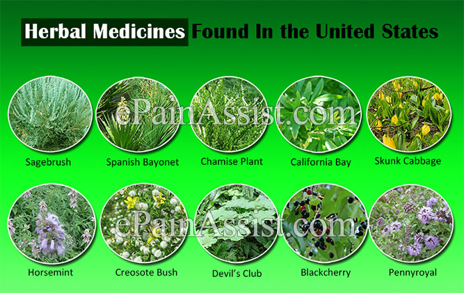 Herbal Medicines Found In the United States