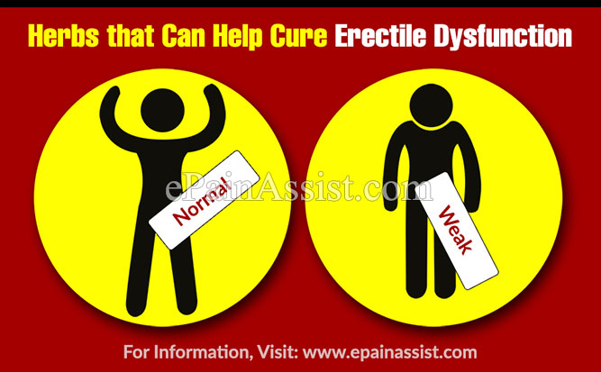 Herbs that Can Help Cure Erectile Dysfunction