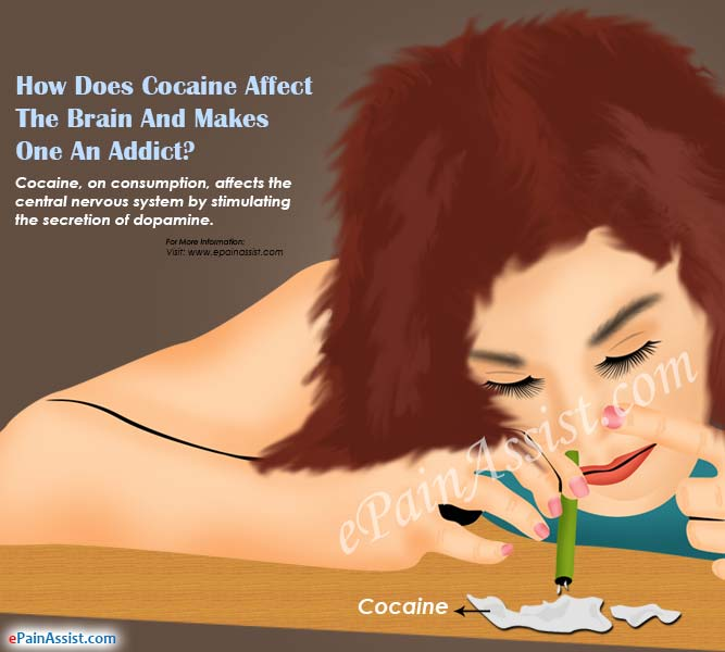 How Does Cocaine Affect the Brain and Makes One an Addict?