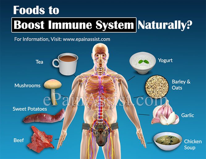 Foods to Boost Immune System Naturally