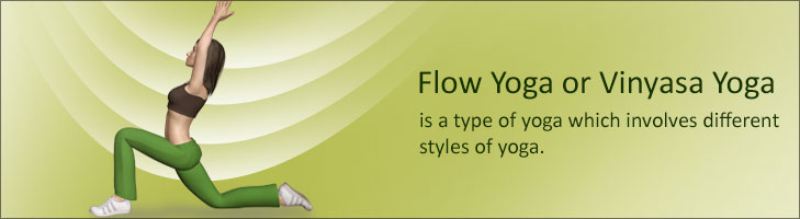 Flow Yoga or Vinyasa Yoga