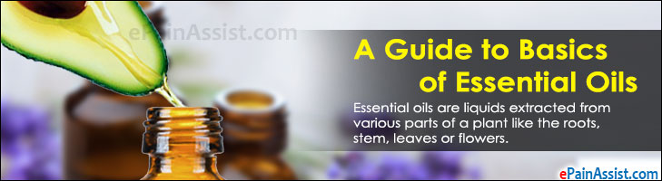 A Guide to Basics of Essential Oils