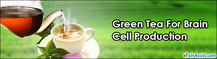 Green Tea For Brain Cell Production