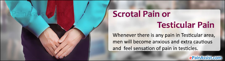 Scrotal Pain or Testicular Pain