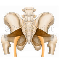 Piriformis Syndrome Massage Treatment