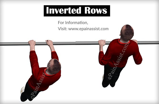 Inverted Rows Workout for Arms Without Weights